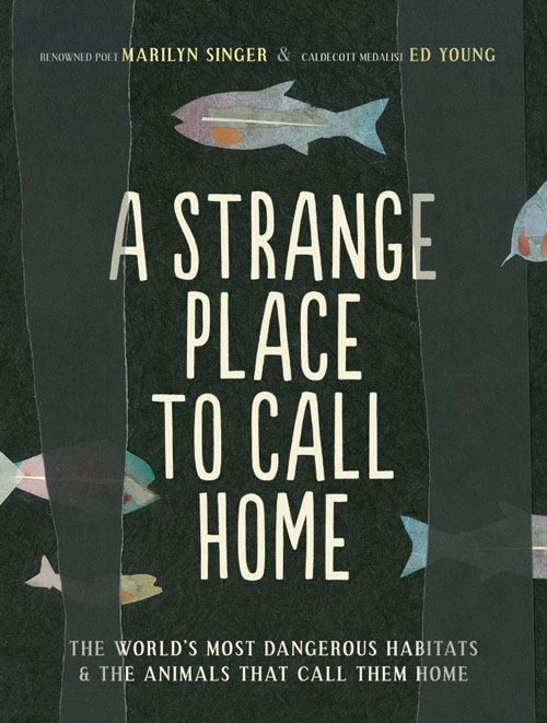 strange-place-to-call-home