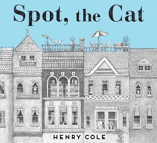 spot-the-cat
