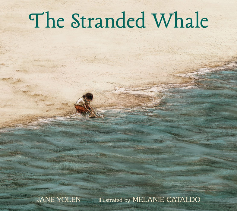 stranded-whaleCWP