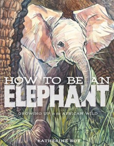 How to Be an Elephant